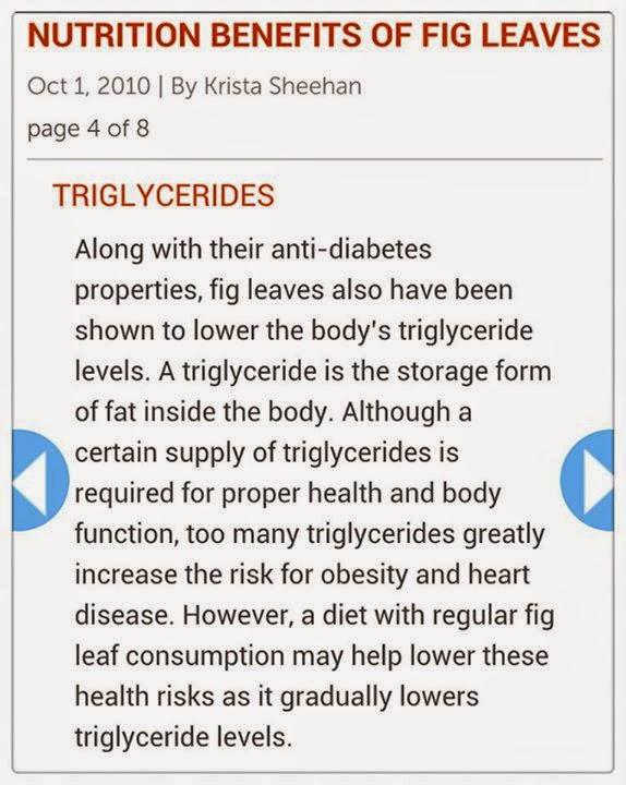 100g figs calories