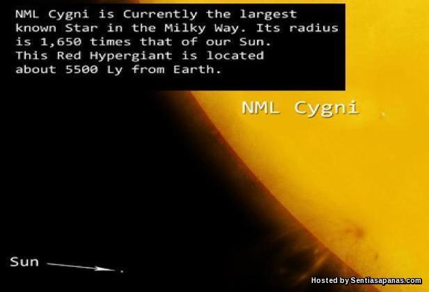 NML Cygni