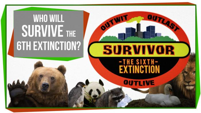 Survive The Extinction