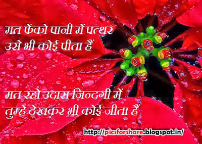 Love Shayari, Sad Shayari, Love Message, Romantic Shayari