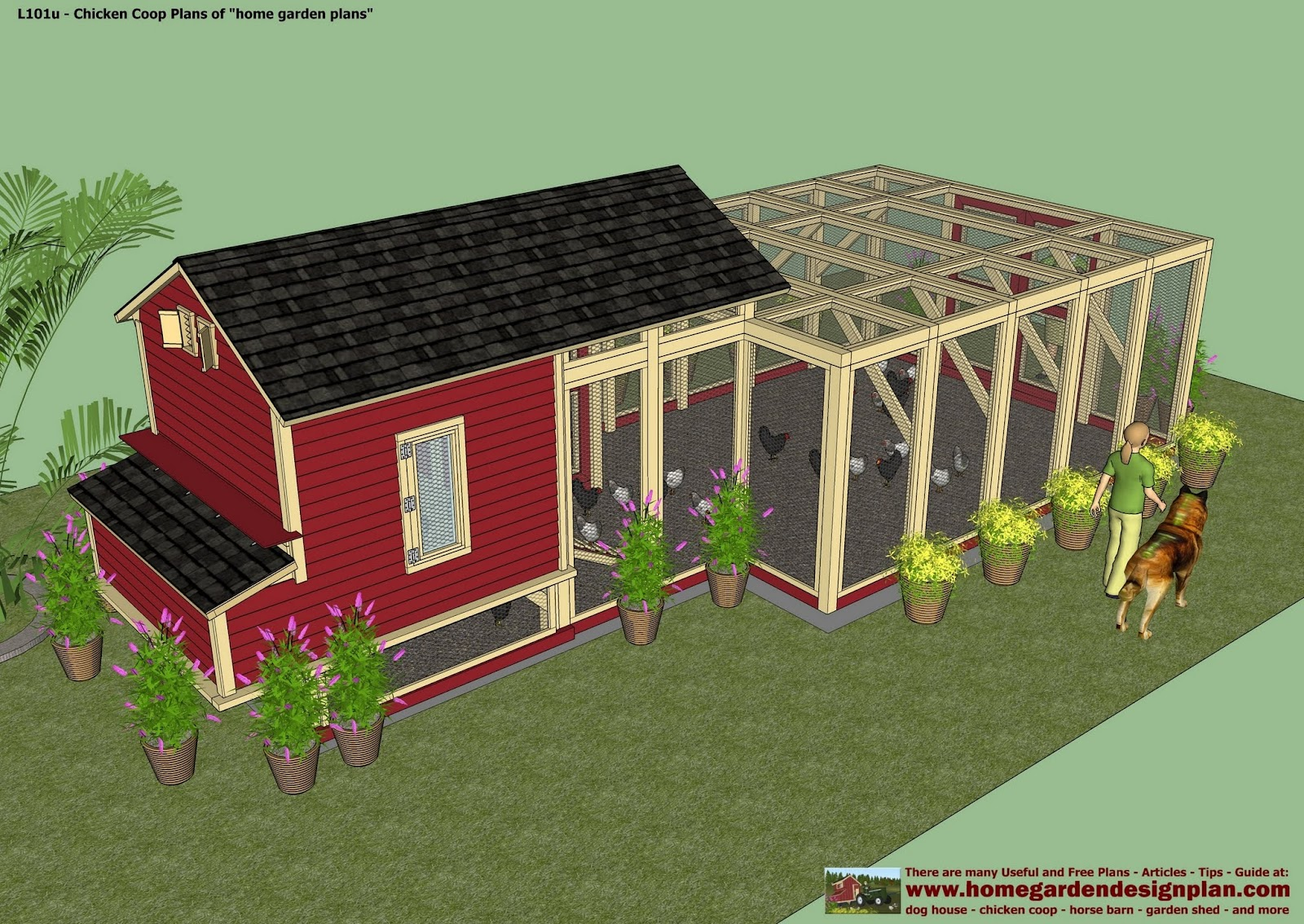 Bertia lanhe basic chicken coop plans for Large chicken house