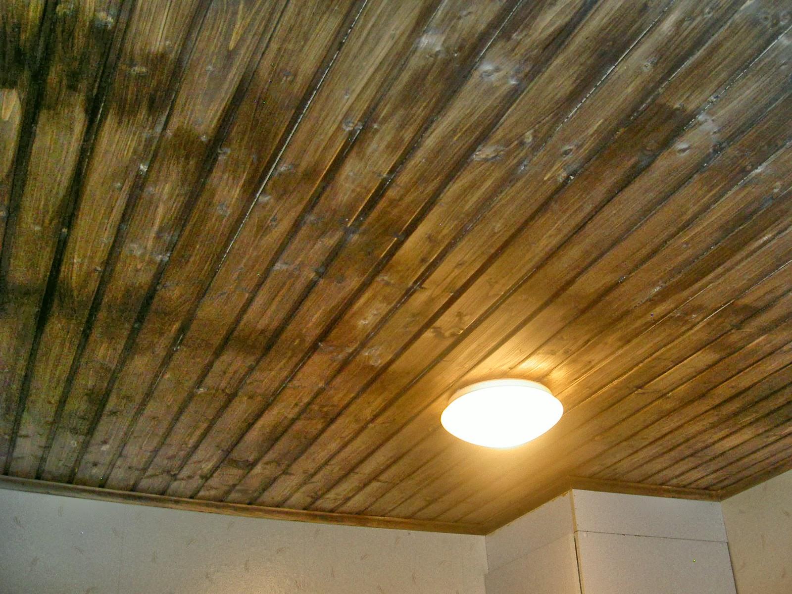 Pesuhuoneen kattopaneeli