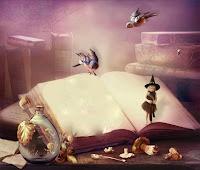 libro lector