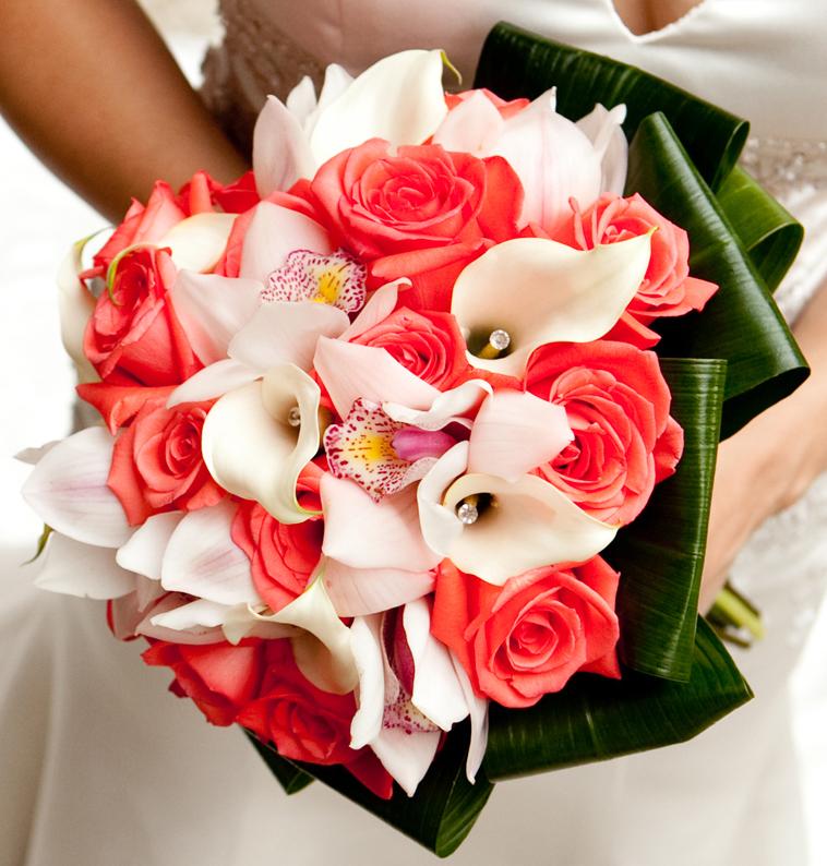 Coral Roses White Cymbidium Orchids White Jeweled Mini Calla Lilies