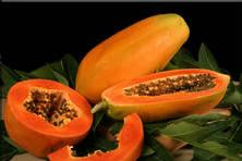 papaya prevent breast cancer