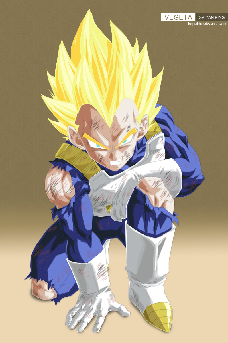 Dragon ball z wallpapers vegeta super saiyan - Photo dragon ball z ...