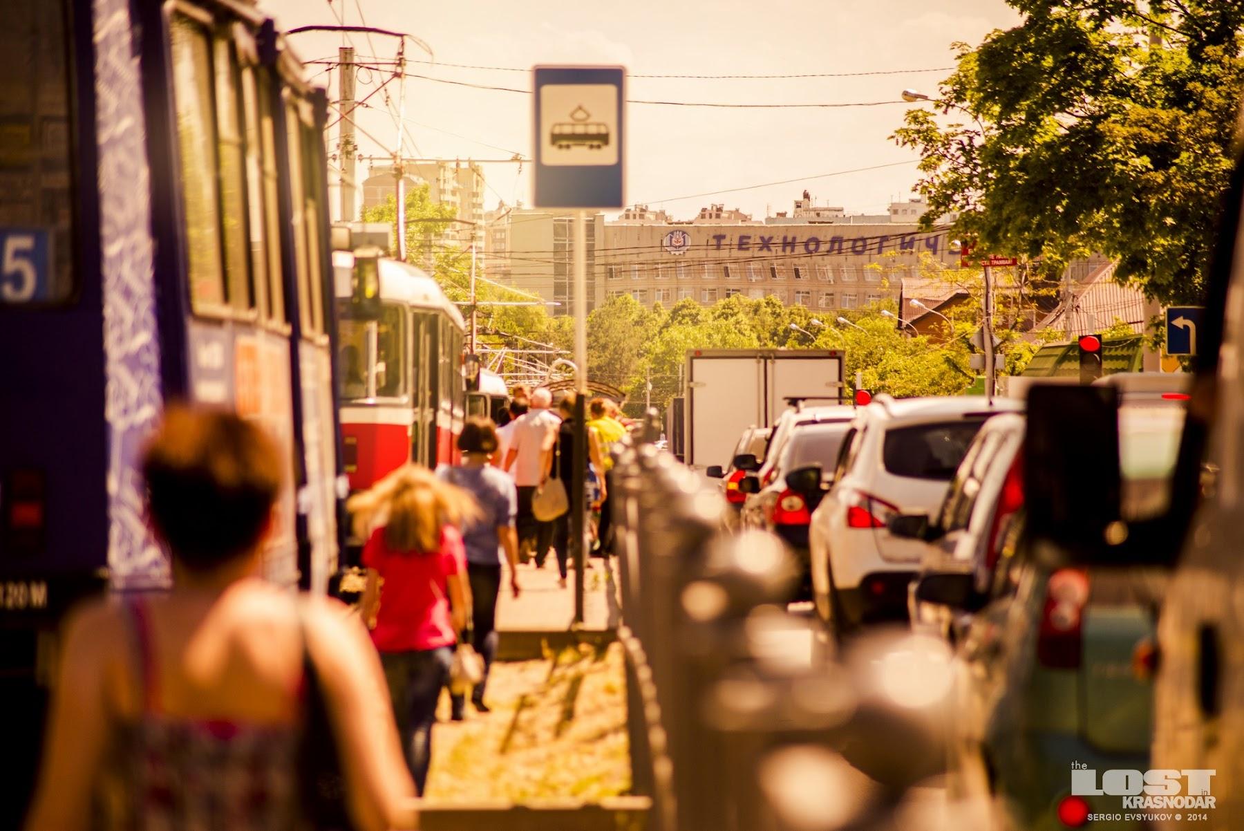 Лето на Кубани