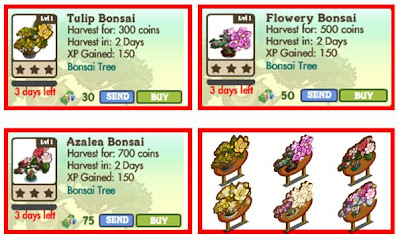 list of bonsai tree prices in the market