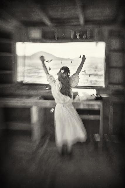 Пусть они свободно летят в черно-белых фотографиях Кэролайн Хэмптон