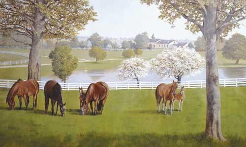 My Top Collection: Horse Wallpaper Murals