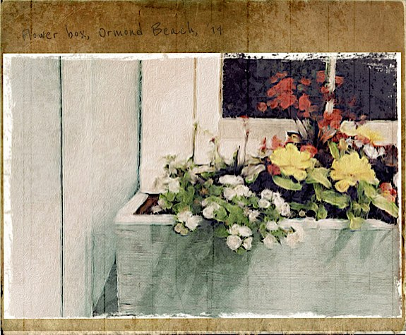 Flower box Ormond Beach © Jack Webb