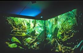 Doug Aitken : Mil Instalaciones