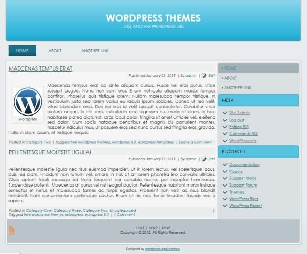 2 Column WordPress Themes wordpress blog themes