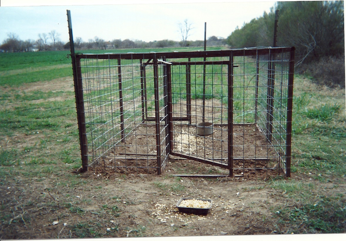 Best Hog Trap Door Design