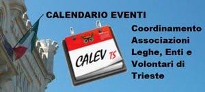 CALEV TS