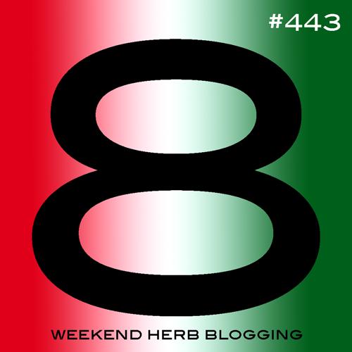 Weekend Herb Blogging #443 Hosting