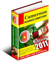 Situation Economique Du Cameroun