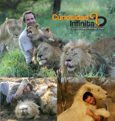 Kevin Richardson, encantador de leones, leon blanco, África, zoólogo, tigres, familia de leones, hienas, animales salvajes