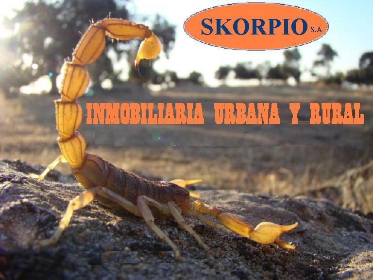 INMOBILIARIA SKORPIO  S.A