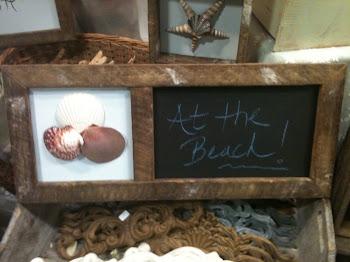 Chalkboard seashell