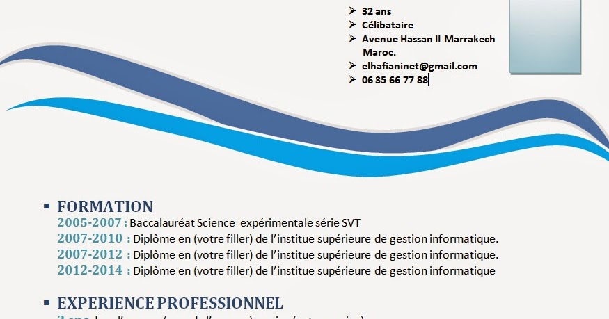 comment faire un cv  cv format word