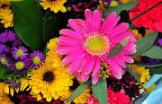 Imágenes de Flores. Fotografías Seleccionadas de Flores Naturales y . flores en la pintura copia