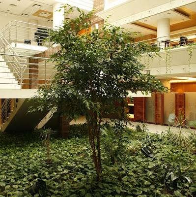 Jardins Interiores