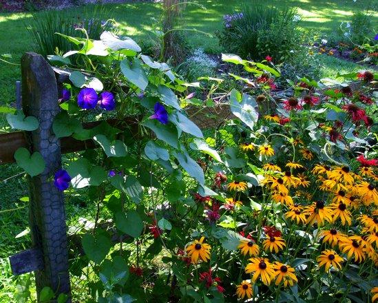 Jardiner a ecol gica abonos naturales for Jardineria ecologica