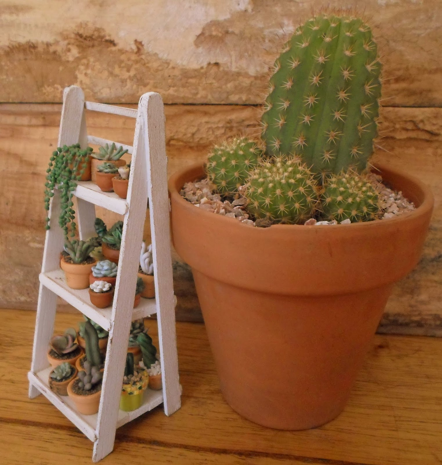 Las Margaritas: Escalera estante de madera para mis cactus y  #7E4219 1523x1600