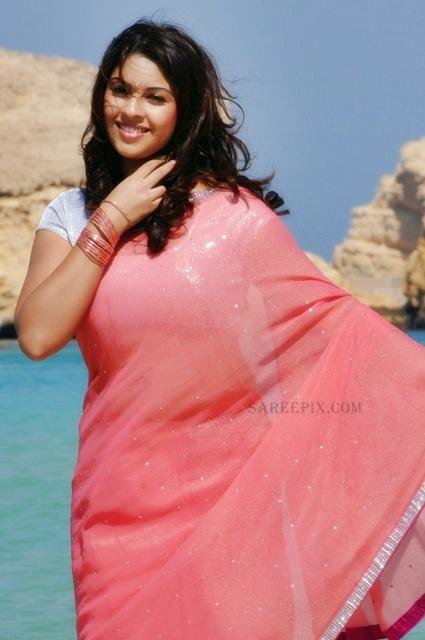 Richa-gangopadhyay-pink-saree-stills