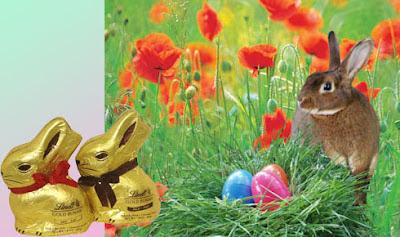 Mujer cristiana el conejo de pascua y la biblia for El conejo de pascua