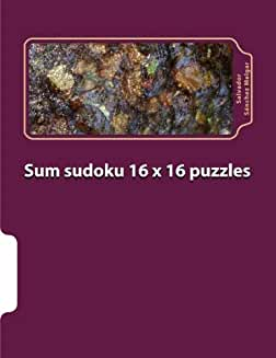 Sum Sudoku 16X16 Puzzles