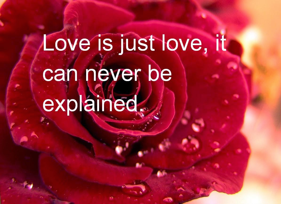 Love Quotes For Him With Roses : love-is-just-love-never-can-be-explained-quote-red-rose-BG-image.jpg