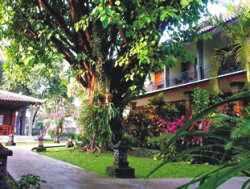 Hotel Bintang 2 Yogyakarta - Puri Pangeran Hotel Yogyakarta