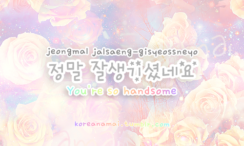 Cute/Romantic/Sweet Hangul (Korean) Phrases II