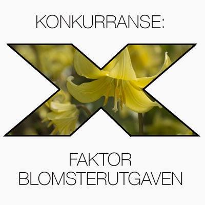 http://moseplassen.com/2015/03/x-faktor-blomster-gule/