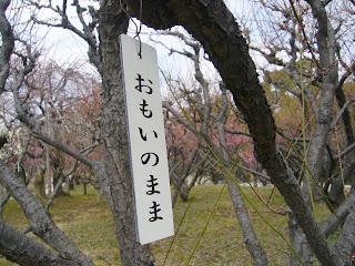 兵庫県・伊丹市 緑ヶ丘公園の梅 おもいのまま