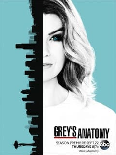 Greys Anatomy - A Anatomia de Grey 13ª Temporada Completa Séries Torrent Download capa