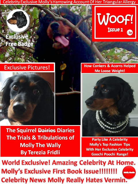 The Squirrel Diaries!