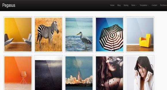 Pegasus Gallery Blogger Template