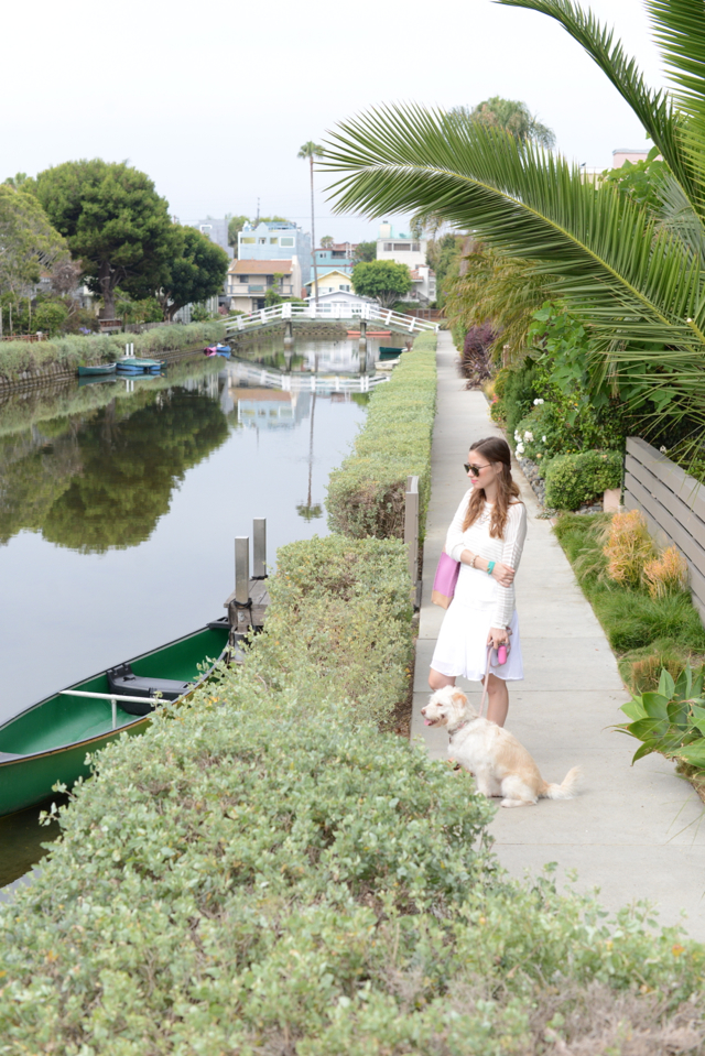 dog walking in the venice canals via M Loves M