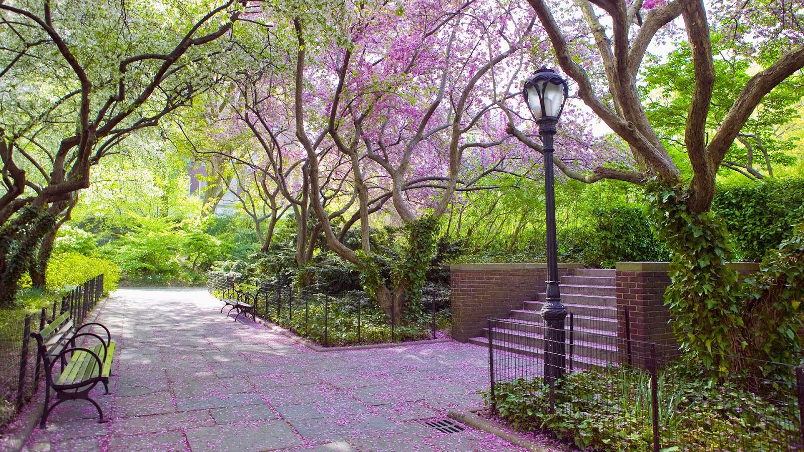 Banco de im genes parque p blico con plantas flores y for Plantas ornamentales para parques