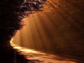 """""""Todos temos luz e trevas dentro de nós. O que nos define é o lado com o qual escolhemos seguir."""""""