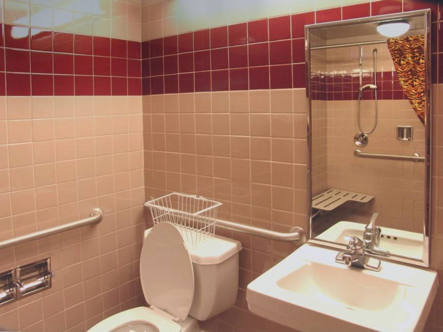 Handicapped Equipment Bathroom Mobroi Com