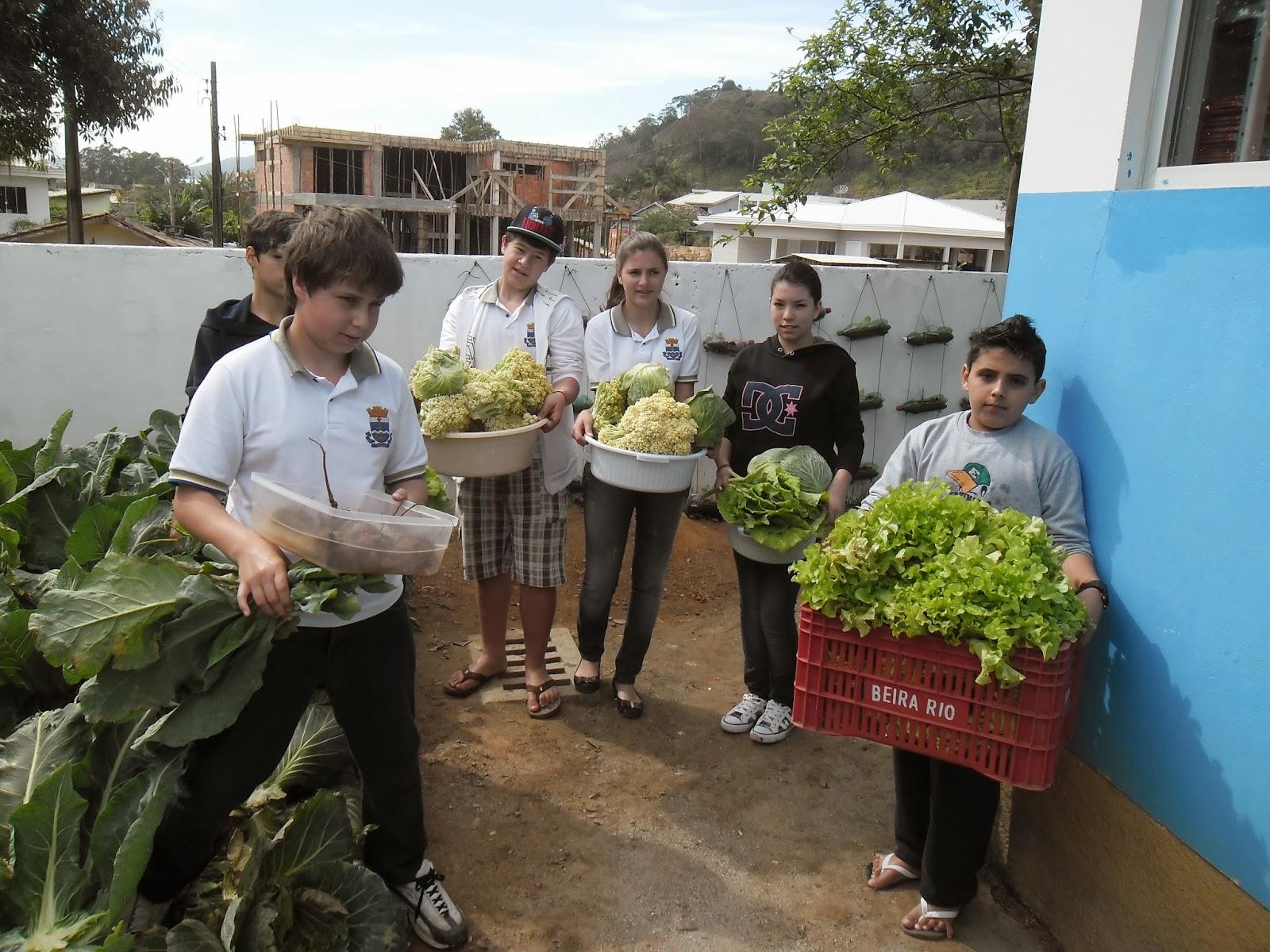 #2F769C desde Abril de 2013 na Escola Básica Judith Duarte de Oliveira na  1600x1200 px Projeto Cozinha Experimental Na Escola #2535 imagens