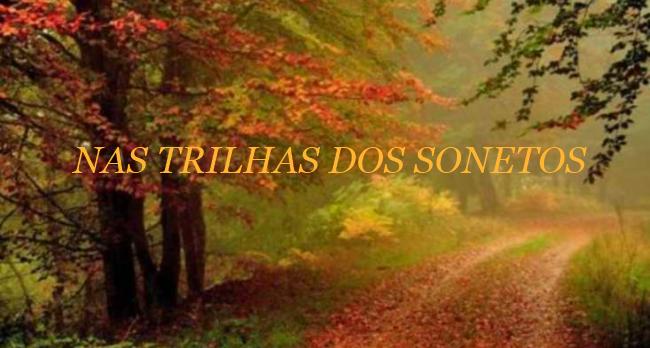 NAS TRILHAS DOS SONETOS