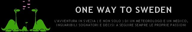 One way to Sweden - Il blog di due italiani in Svezia
