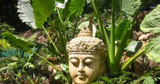 Studio floral dora santoro jardins de bali for Les jardins de bali