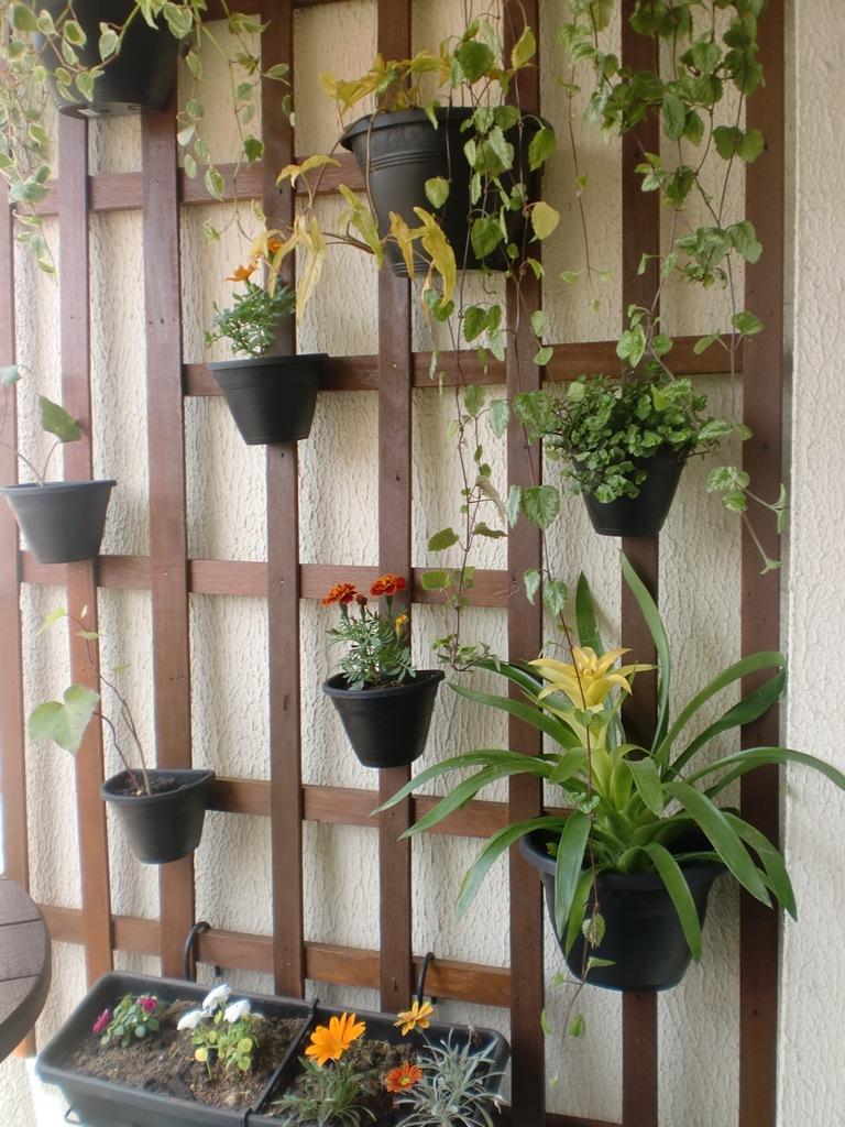 jardim vertical tecido:Um lindo jardim vertical formado pelas ripas de um estrado de cama de