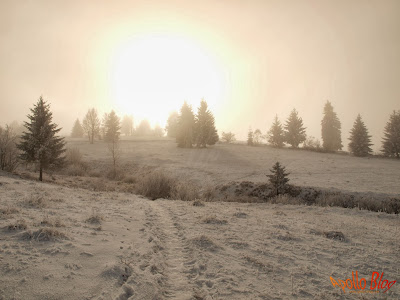 Drumul spre satul Filpea